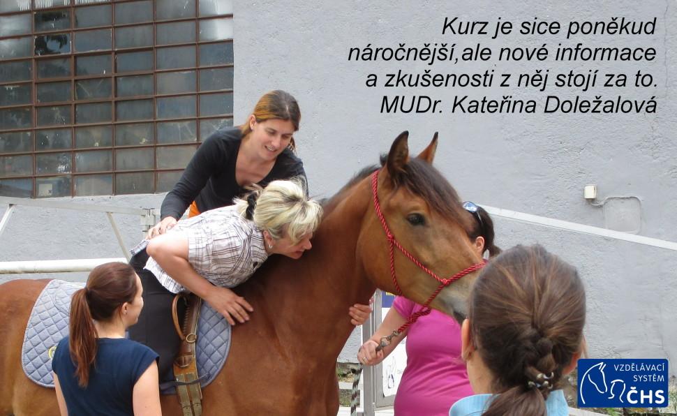 reference kurz hipoterapie (2)