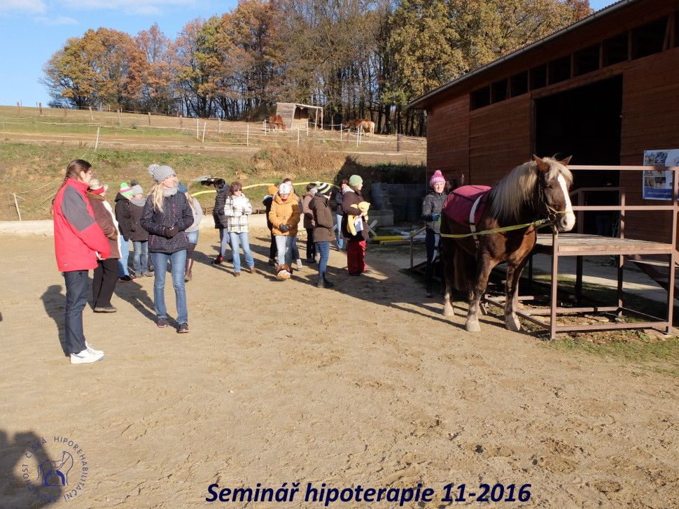2016_11_workshop_hipoterapie_chs-2