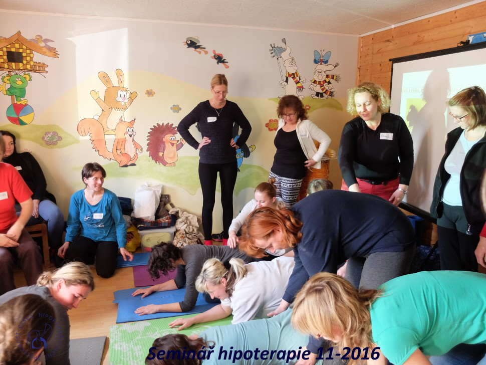 2016_11_workshop_hipoterapie_chs-7