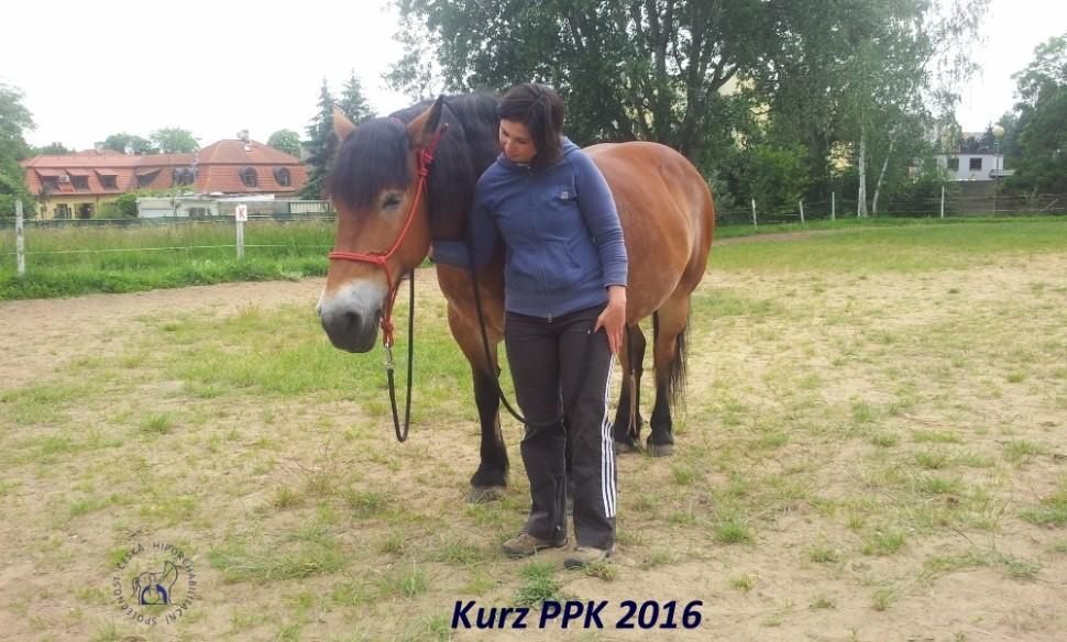 kurz-ppk_cerven_2016-12