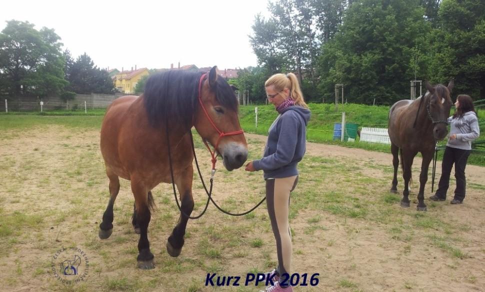 kurz-ppk_cerven_2016-13