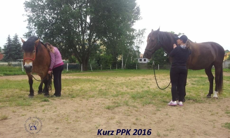 kurz-ppk_cerven_2016-15