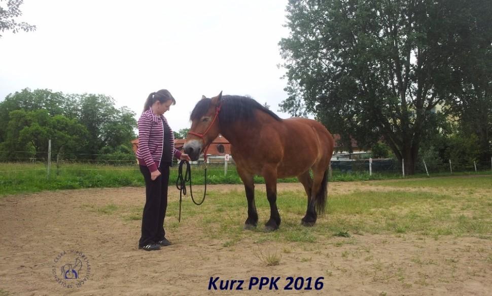 kurz-ppk_cerven_2016-16