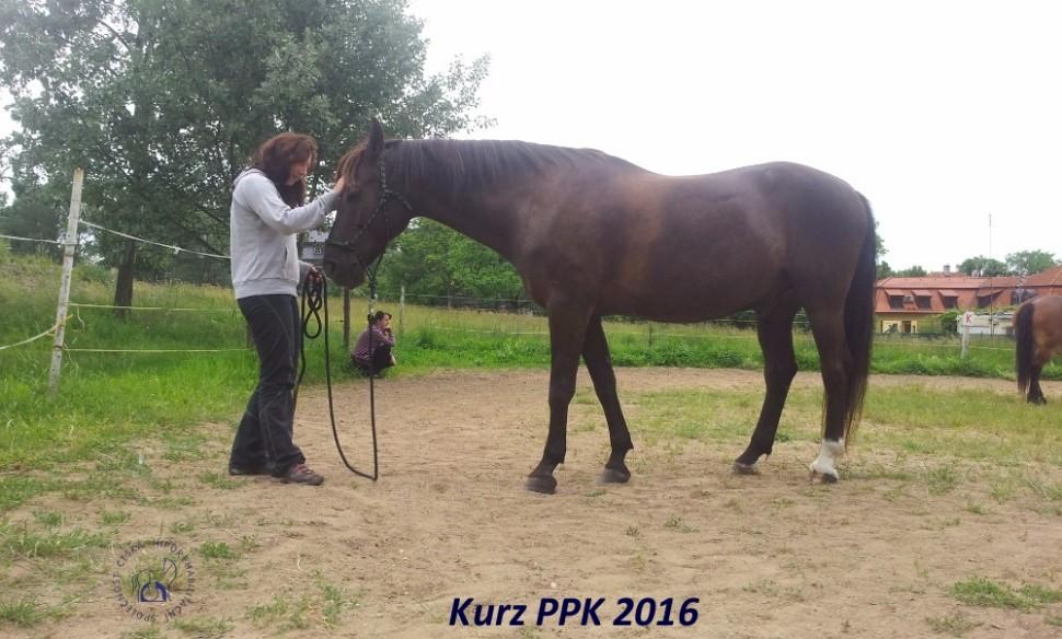 kurz-ppk_cerven_2016-19