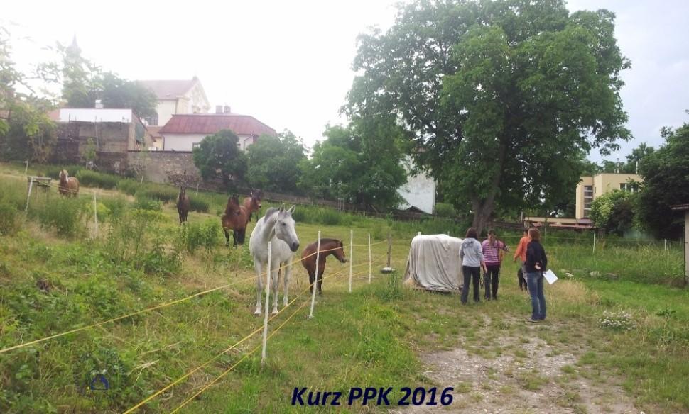 kurz-ppk_cerven_2016-2