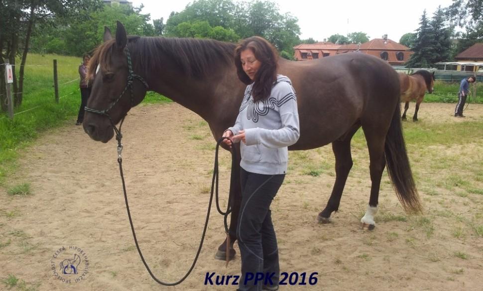 kurz-ppk_cerven_2016-21