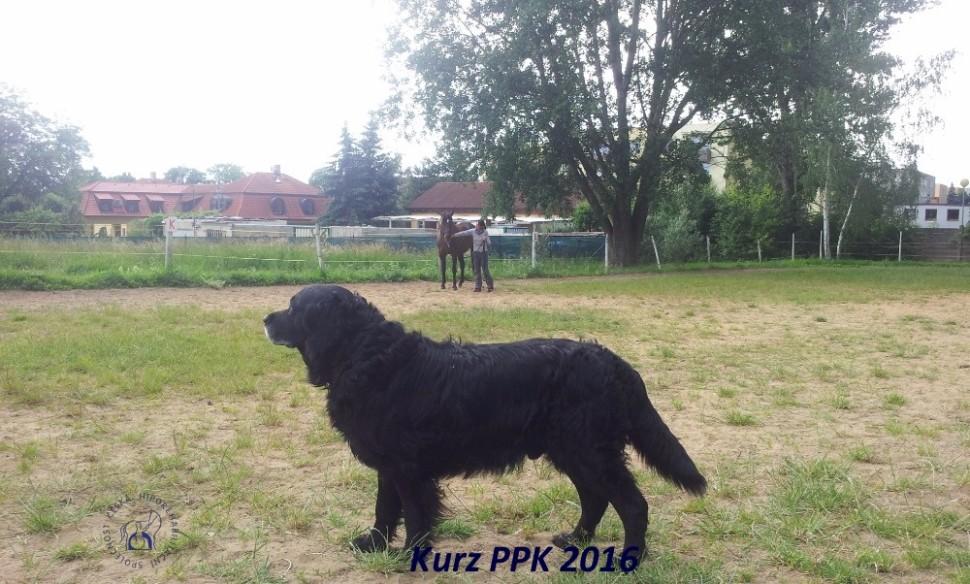 kurz-ppk_cerven_2016-23