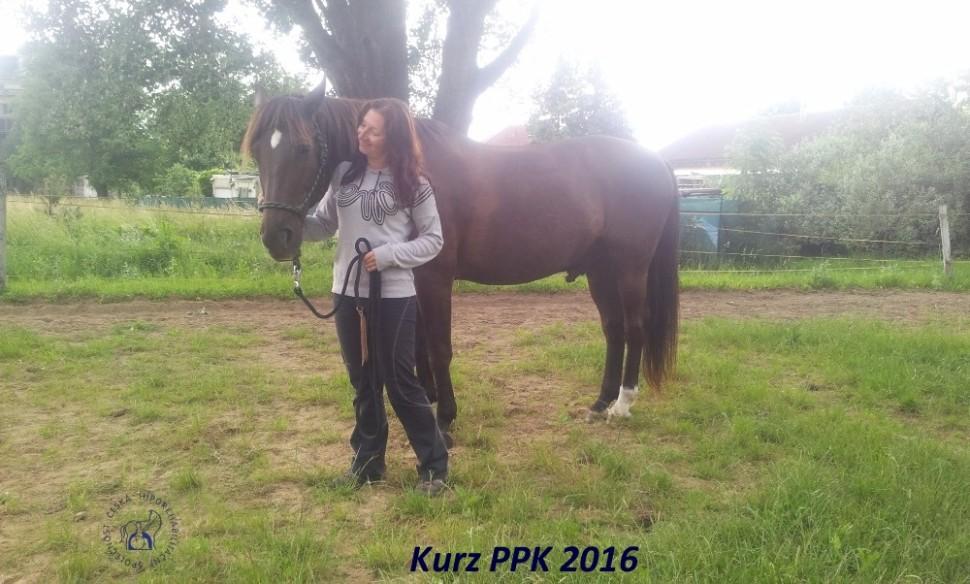 kurz-ppk_cerven_2016-29