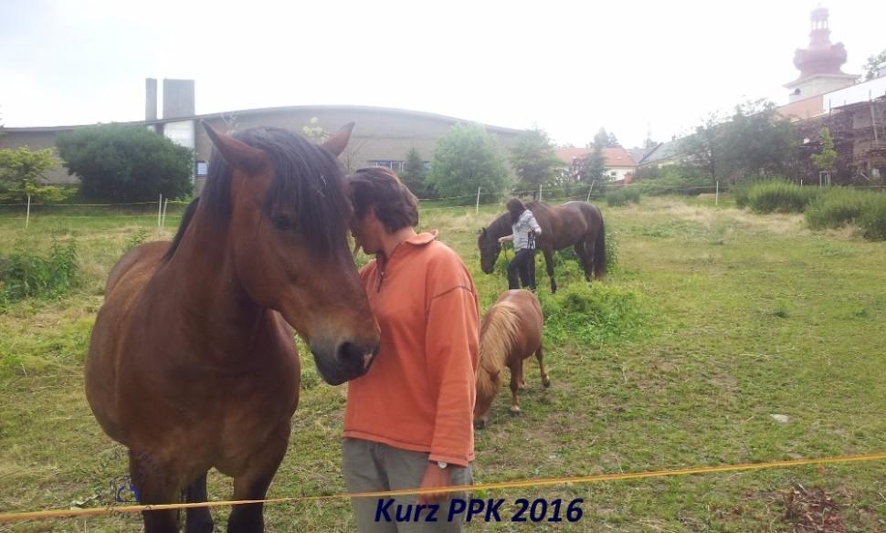 kurz-ppk_cerven_2016-3