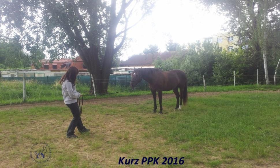 kurz-ppk_cerven_2016-30
