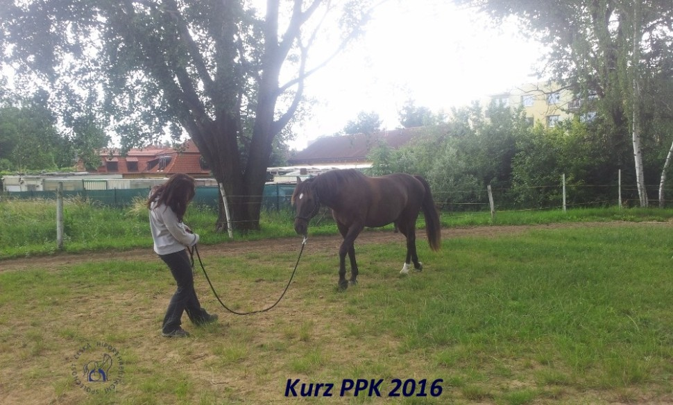 kurz-ppk_cerven_2016-31