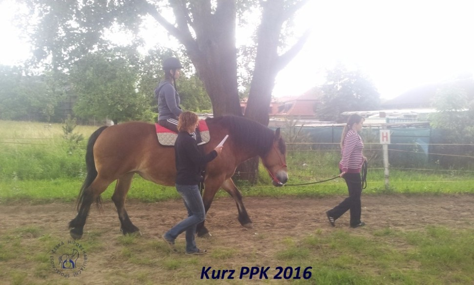 kurz-ppk_cerven_2016-33