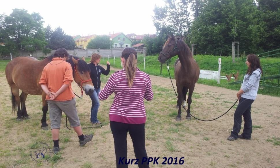 kurz-ppk_cerven_2016-6