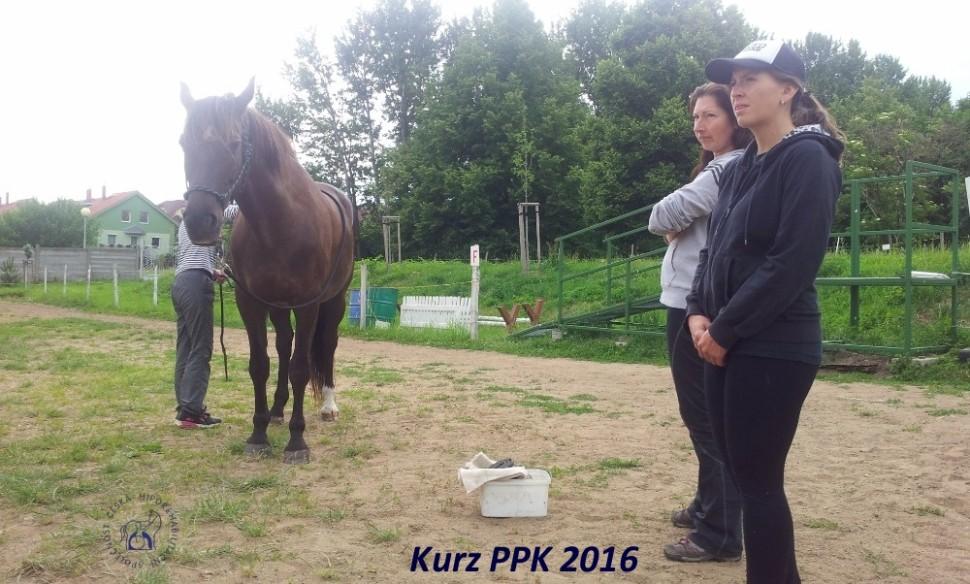 kurz-ppk_cerven_2016-8